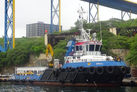 Orca VI